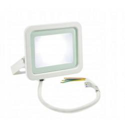 Naświetlacz LED NOCTIS LUX-2 20W CW white Spectrum