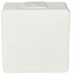 Puszka biała n/t 118x118x68 IP55 duża/guma 053-01