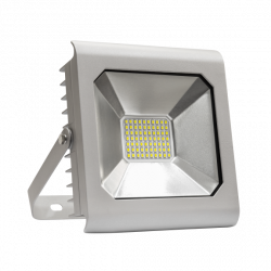 Naświetlacz LED NOCTIS LUX SMD 50W CW silver Spectrum